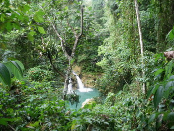 Maggotty Falls Jamaica