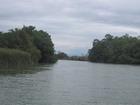 Safari on the Black River