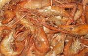 Pepper Shrimp Jamaica