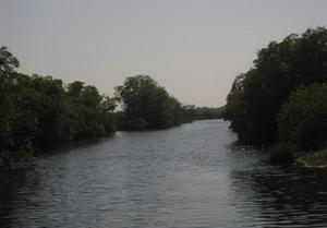 Black River Jamaica