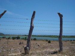 Drought St. Elizabeth Jamaica