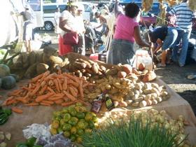 Newmarket St. Elizabeth Jamaica